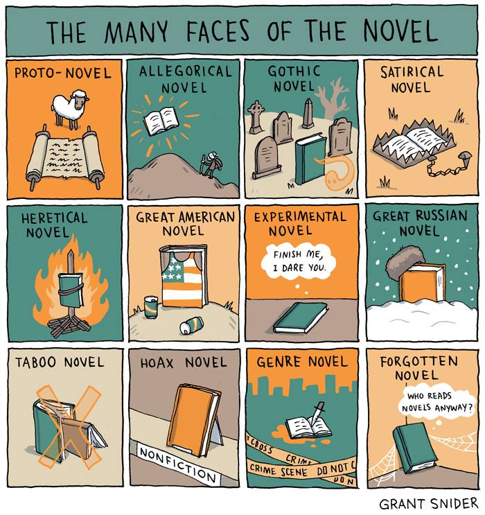 the many faces of the novel