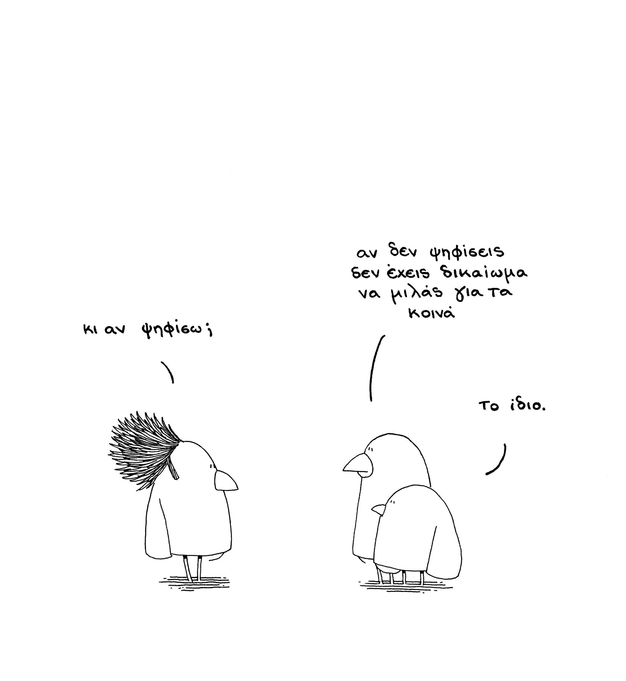 election-birds